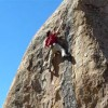 Jorgeson's Ambrosia Highball Repeated By 15 Year-Old Enzo Oddo