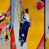 2010 Bouldering World Cup Vienna Results