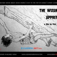 The Wizard's Apprentice & Park Life